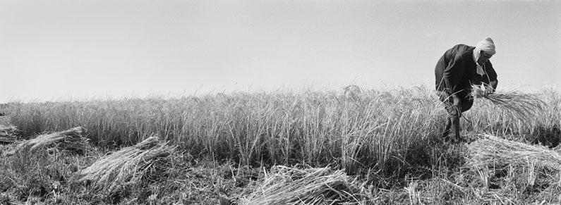 Djéol, 2006 © Laurent Chardon