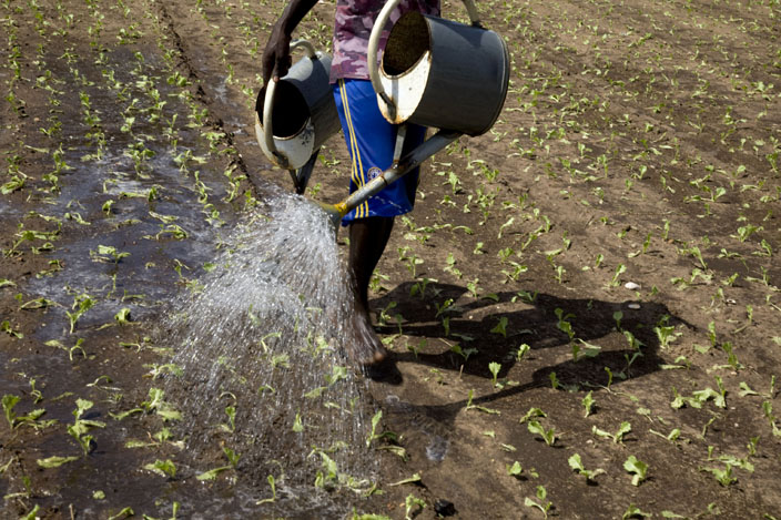 le jardinier © Fatoumata Diabaté