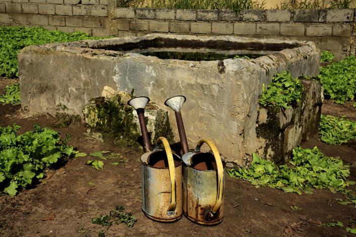 le jardin © Fatoumata Diabaté