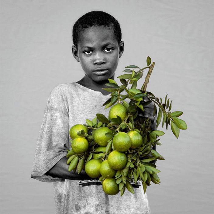 Mandarina.Mandarina - Citrus reticulata | série Le paradis des fruits permis © Nedjma Berder