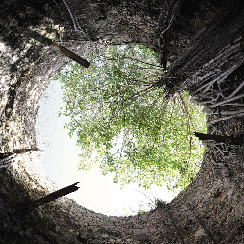 Ruines du Moulin à sucre, Habitation La Coulisse, Trois Rivières 2012 © Nicola Lo Calzo