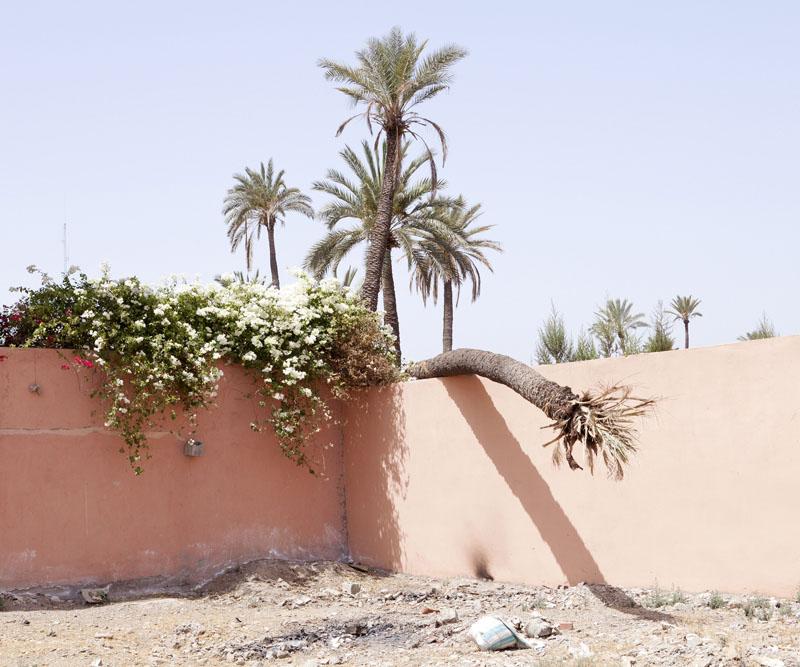 Jmarrakech © Hanane Housni